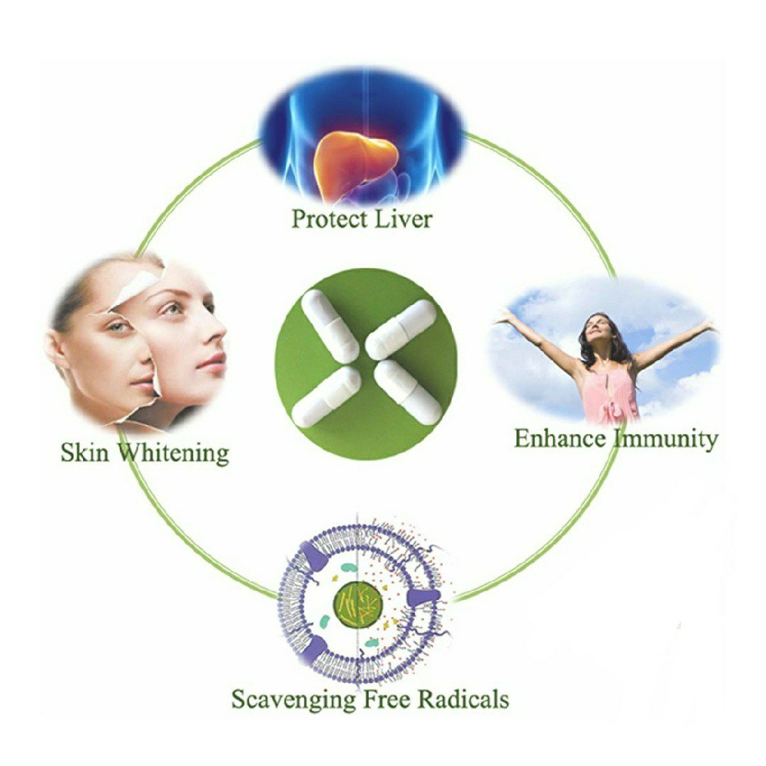 Glutathione description and functions